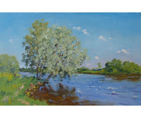 Morning on river in summer