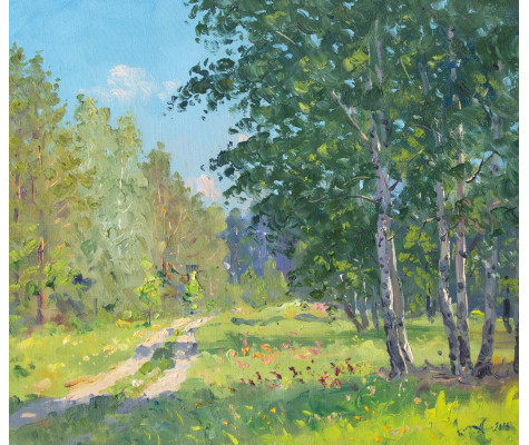 Road in forest. Summer