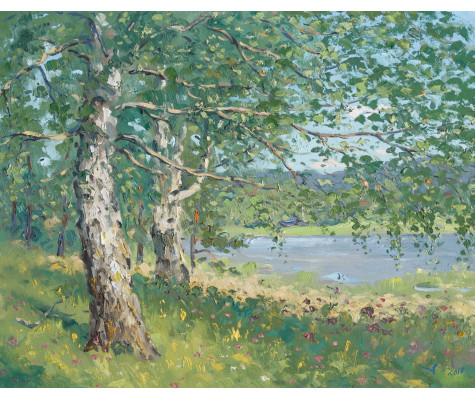 Dychkovo birches, summer