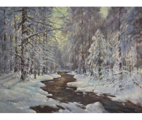 After a snowstorm. Forest stream