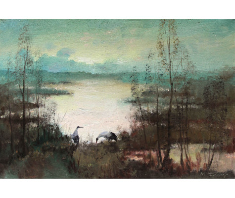 Cranes on the pond, morning